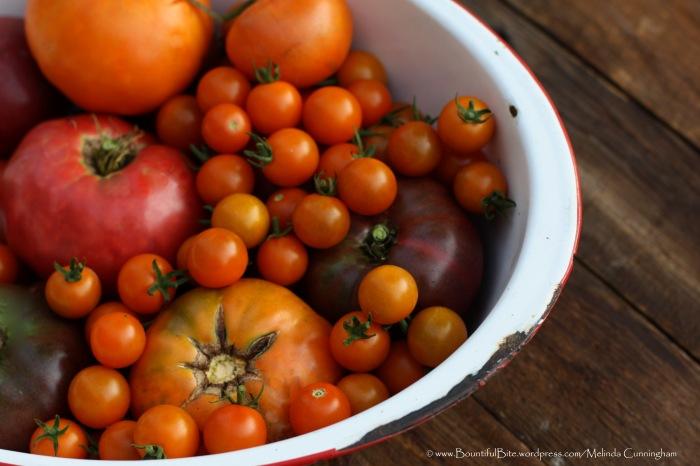Heirloom Tomatoes from my Kitchen Garden